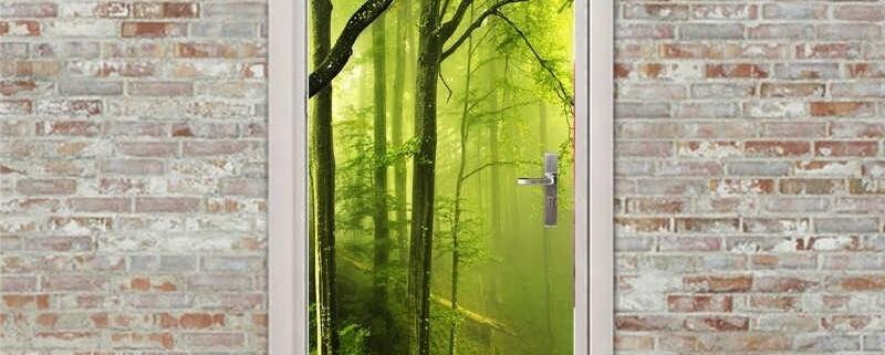 در سی در به زیبایی جنگل